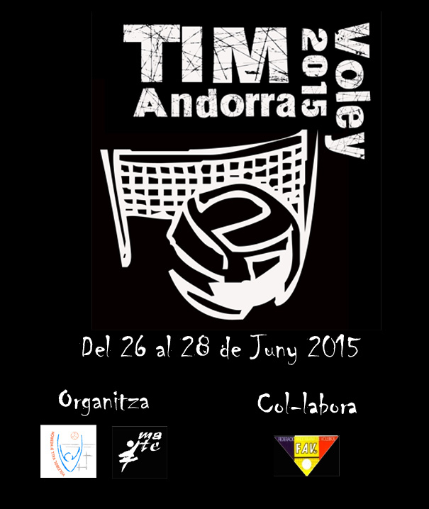 TIM'15 Voley